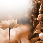 Photo of meditation, lotus, and a busy street